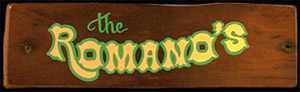 Custom Hand-Painted Family Name Hand-Painted Wooden Sign